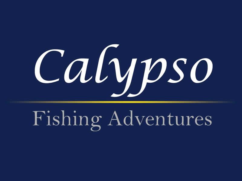 Web Admin Calypso v     Cache  Computing  Pinterest